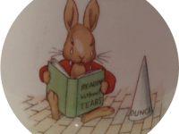 bunnykins HW1R Dunce design